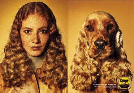 People That Look Like Their Dogs